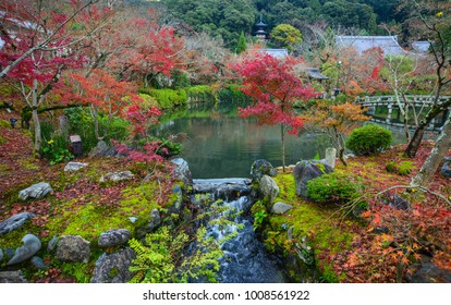 Autumn garden with maple trees and a pond in Kyoto, Japan.