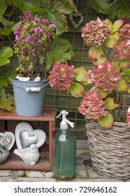 Autumn garden with ornaments and hydrangea