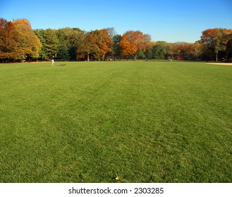 Autumn grass and trees, Great Lawn, Central Park, Manhattan, New York