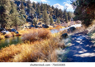 Autumn grasses and trees along the Crooked River trail,Redmond, Oregon