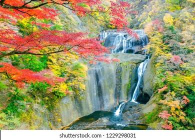 Autumn, great falls and fukuroda falls