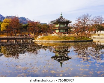 Autumn of Gyeongbokgung Palace seoul Korea
