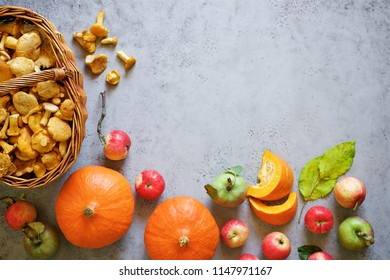 Autumn harvest of bright fruits, vegetables and  wild mushrooms chanterelles. Top view, gray background