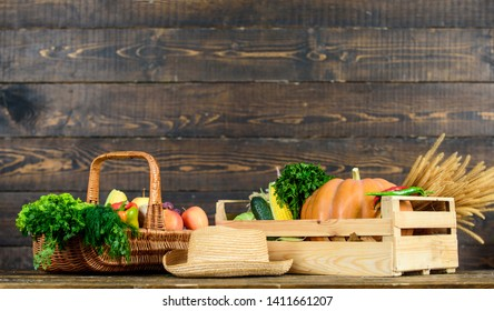 Autumn harvest crops vegetables. Locally grown natural food. Farmers market. Vibrant and colorful vegetables. Homegrown vegetables. Fresh organic vegetables wicker basket. Fall harvest concept.