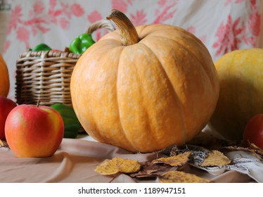 Autumn harvest. Fall still life with big yellow pumpkin, red apples, green pepper and autumn leaves on the table.