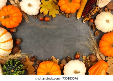 Autumn harvest frame with pumpkins, leaves and nuts over a slate stone background
