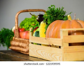 Autumn harvest organic crops pumpkin corn vegetables. Vegetables from garden or farm close up. Homegrown vegetables. Fresh organic vegetables in wicker basket and wooden box. Fall harvest concept.