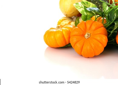 Autumn harvest of pumpkins and gourds