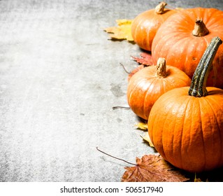 Autumn harvest. Pumpkins with autumn leaves. On the stone table.