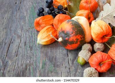 autumn harvest: pumpkins, nuts, cape gooseberries