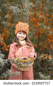 Autumn harvest of sea buckthorn. funny girl in an orange hat and a brown coat holds a wicker basket with berries and leaves and smiles. vertical portrait of a preschooler.