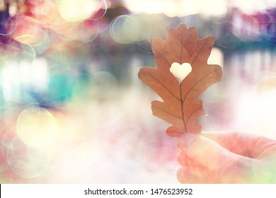 autumn heart on oak yellow leaf / heart symbol in autumn decoration, concept autumn love, walk in the park