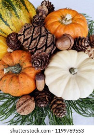Autumn holiday decoration with mini pumpkins of different colours, green branches, pinecones and acorns. Close up, white background, house decorating