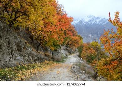 Autumn in Hunza Valley around northern area of  Pakistan along Karakorum mountain