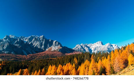 Autumn in the italian alps