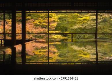 日本・京都・瑠璃光院秋庭