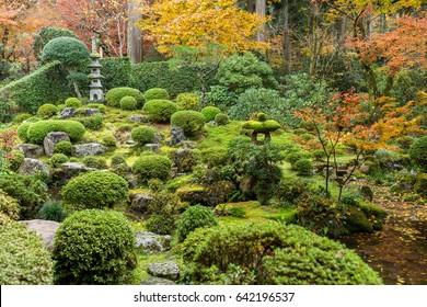 Autumn Japanese park