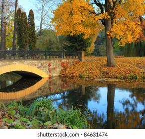 Autumn in the japanise park