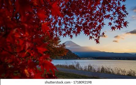 Autumn at kawaguchiko lake with Mt.Fuji background.