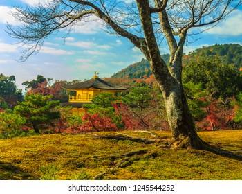 Autumn at the Kinkakuji World Heritage Temple in Kyoto, Japan