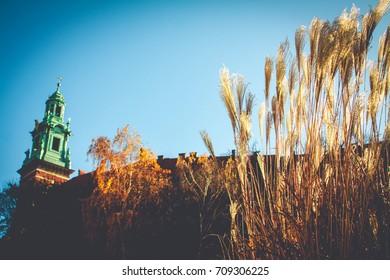 Autumn in Krakow. Wawel Castle