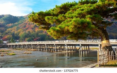 Autumn in Kyoto Japan. Shoot at 2012