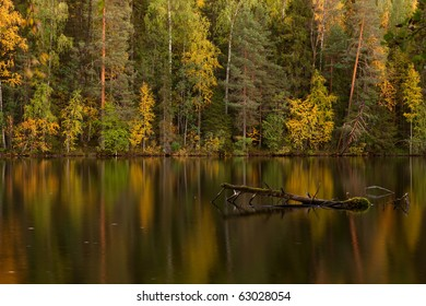 Autumn lake with dead tree in a water in dusk (Finland)