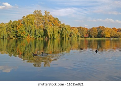 autumn lake in Nowa Huta, Krakow, Poland