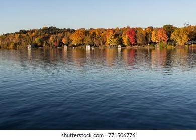 Autumn Lake Shore