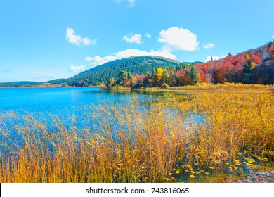 Autumn landscape in Abant Lake -  Bolu, Turkey