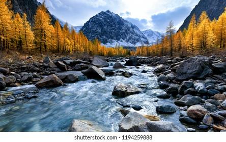 Autumn landscape with Aktru river and peak Karatash. Altai Mountains. Siberia. Russia
