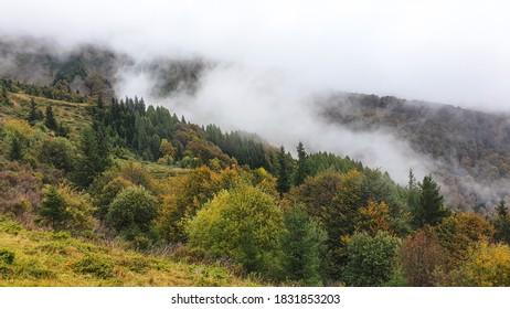 autumn landscape, Baiului Mountains, Romania