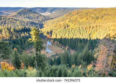 Autumn landscape - Black Forest. View of a small lake surrounded by autumnal trees.