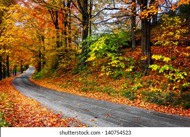 Autumn landscape with bright colorful orange and red trees and leaves along a winding country road