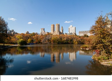 autumn landscape in central park with buildings in background