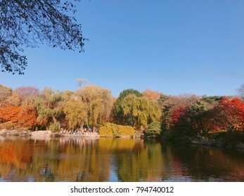 Autumn landscape of Changdeokgung Palace in Korea
