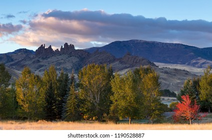Autumn landscape of Cody Wyoming area with spires at sunrise with a red maple in the sunlight in the foreground and rolling hills and rocky spires in the background.