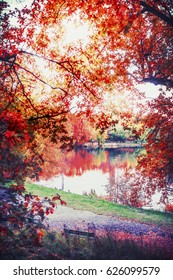 Autumn landscape with colorful foliage and lake in park, fall outdoor nature background