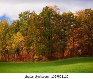 Autumn landscape with colorful trees and fall colors and green grass at sunny autumn day in Finland. Nature background with vibrant colours.