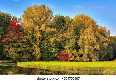 Autumn landscape with colourful trees. The photo was taken in national park de Biesbosch, in the Netherlands.