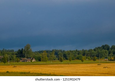 Autumn landscape with cornfield, wood and cloudy blue sky. Classic rural landscape in Latvia. Landscape of yellow cornfield and blue sky.