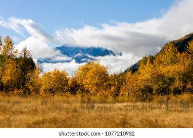 Autumn landscape of fall colors in the Similkameen Valley near Cawston, British Columbia, Canada