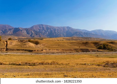 Autumn landscape of the foothills of Kazakhstan. Floodplain of a dried mountain river. Mountains in the background. Blue sky. Foothill vegetation. Dried grass. Herd of horses graze