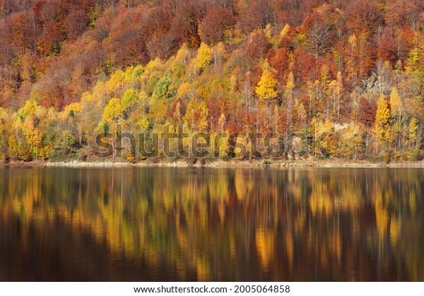 autumn-landscape-forest-reflection-lake-