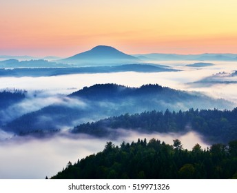 Autumn landscape. Gentle  mist in hilly land. Magnificent autumn creamy fog above forests. High hill increased from fog