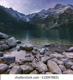 Autumn landscape of a high mountain lake with a drake in the High Tatras Morskie Oko, Poland, Zakopane.