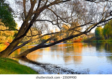 Autumn landscape of lake and bright trees