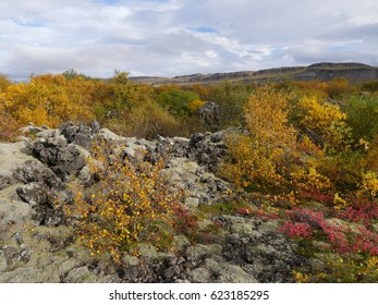 Autumn landscape with lava field in the west part of Iceland