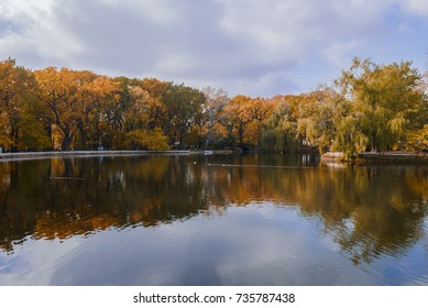 autumn landscape in the mid-latitudes autumn gold