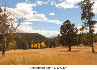 Autumn landscape with mountains and aspen trees turning yellow, Colorado, Rocky mountains.